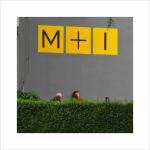 M+I, ... I v tom je až po uši